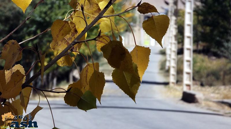 پاییز دهستان فش
